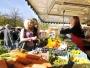 Farmer's market / Source: Presseamt Münster / Angelika Klauser